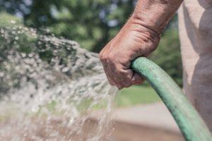 Person gießt seine Pflanzen mit Schlauch